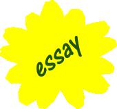 эссе на английском