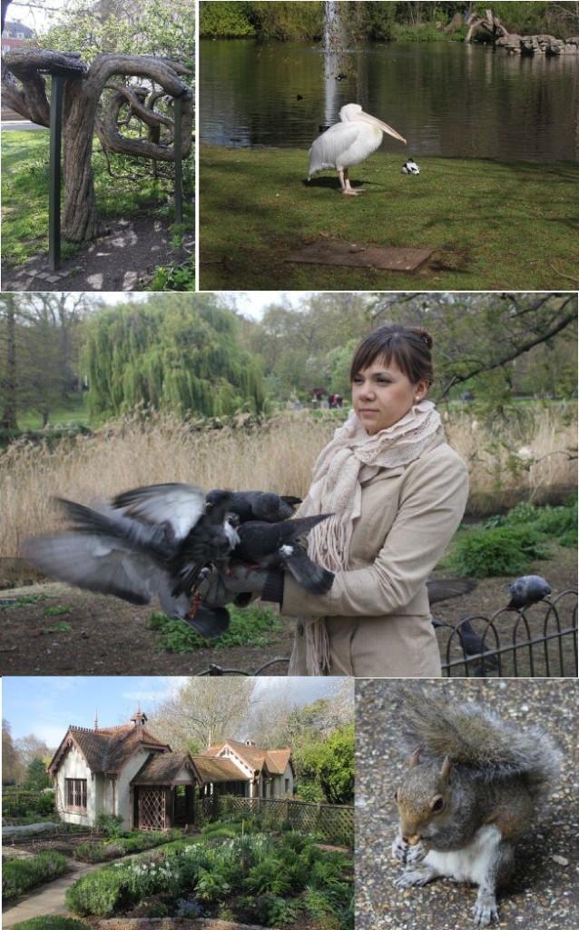 виртуальный тур по Лондону - St James Park