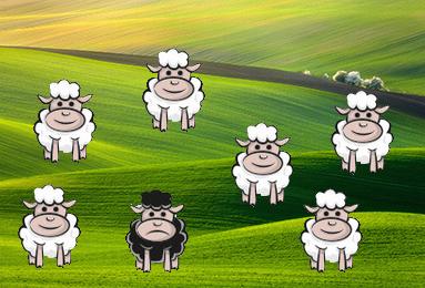 Популярные английские идиомы - black sheep