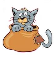 Популярные английские идиомы - let the cat out of the bag