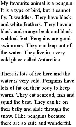 Мое любимое животное - Пингвин