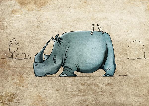 рассказ о вымирающем животном на английском, белый носорог - rhino