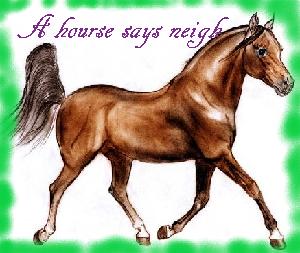 животные на английском - Лошадь