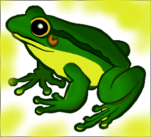 животные на английском - лягушка