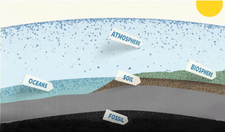 Изменение климата - 5 бассейнов углерода