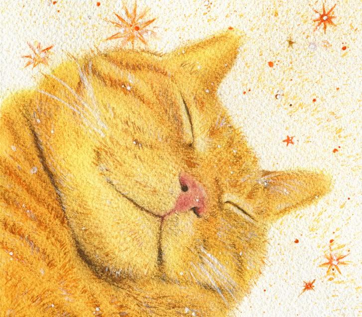 Простые тексты на английском для детей - Happy Cat