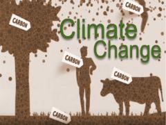 Изменение климата - текст про экологию на английском