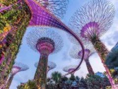 Сингапур (Рассказ на Английском) - миниатюра к статье