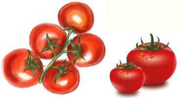 tomatoes - миниатюра к статье