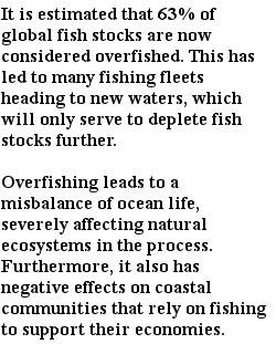 экологические проблемы - чрезмерный рыбный промысел