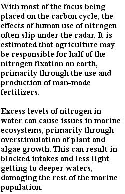 экологические проблемы - круговорот азота