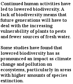 экологические проблемы - снижение биологических ресурсов -